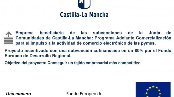 Web subvencionada con FONDOS EUROPEOA